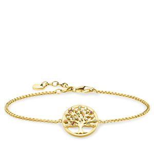 Preview image of Thomas Sabo Yellow Gold Plated Tree Of Love Stone Set Bracelet